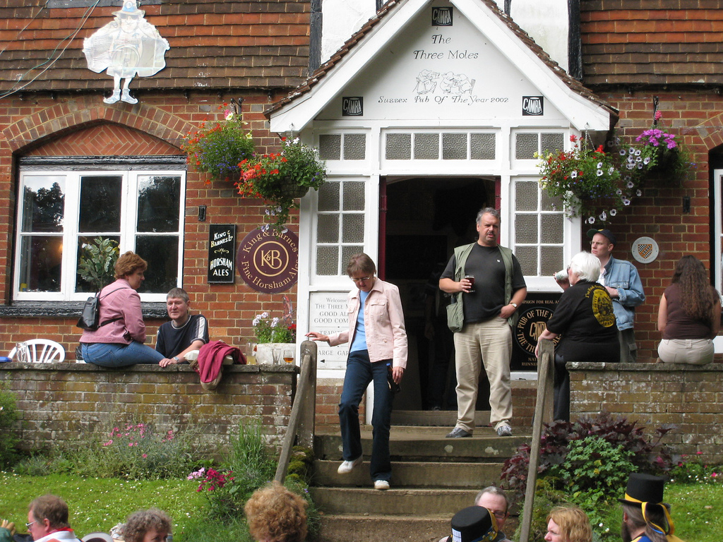 Great Beer Festival - The Three Moles
