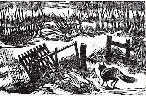 Kevis House - Wood Engravers' 80th Exhibition