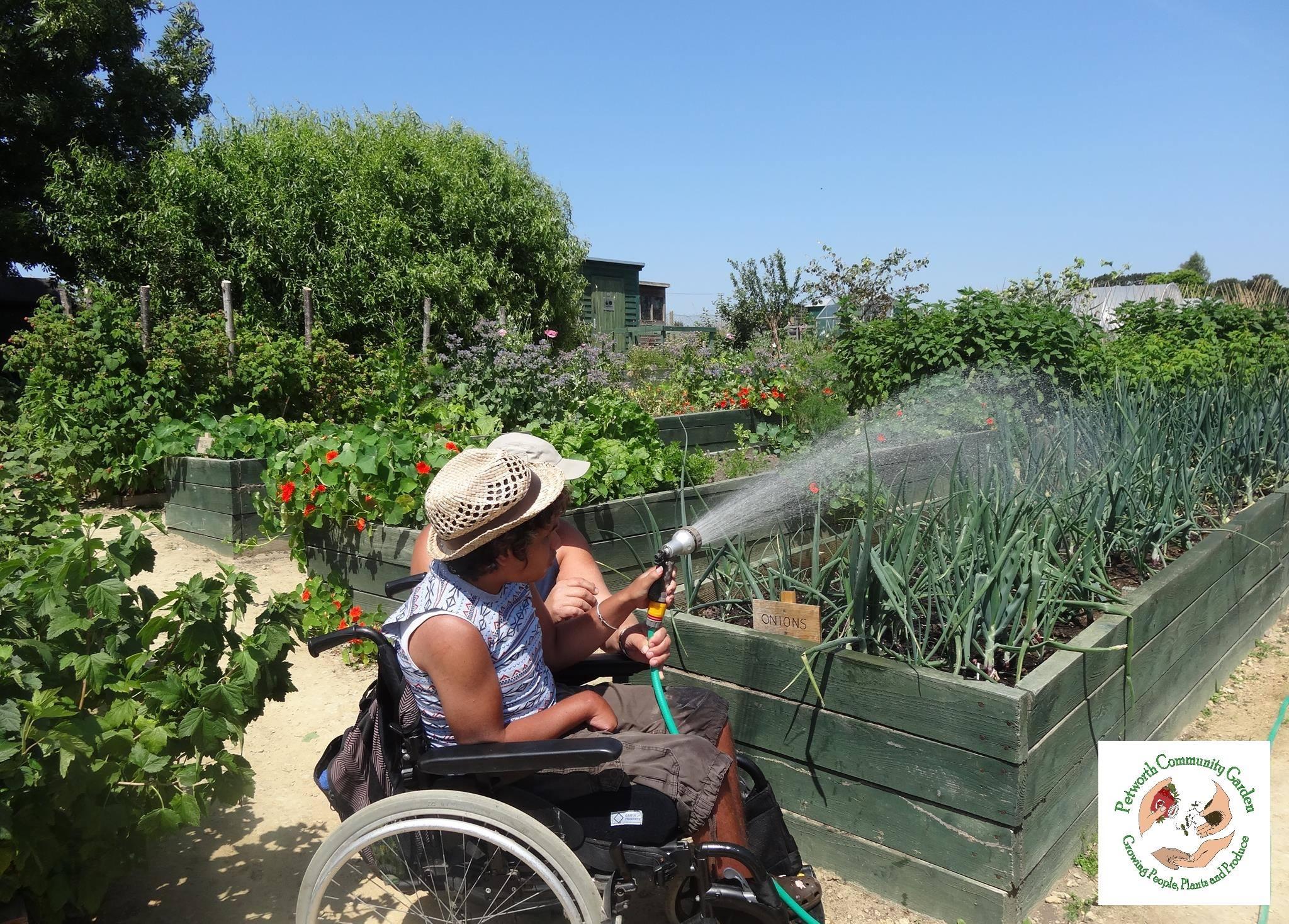 Petworth Community Garden CIC