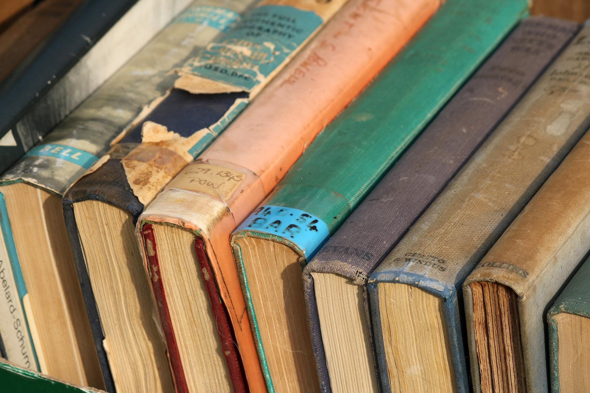 Petworth Society Book Sale