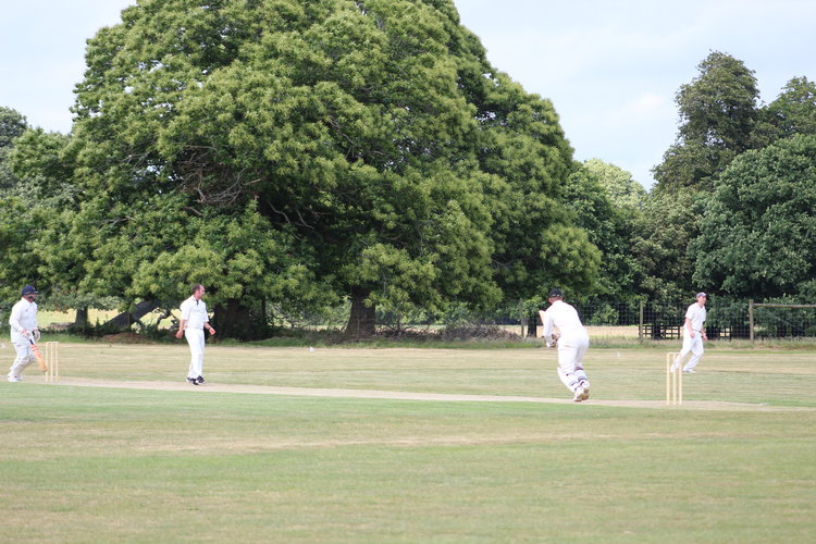 Petworth Park CC vs Cricketers Club of London