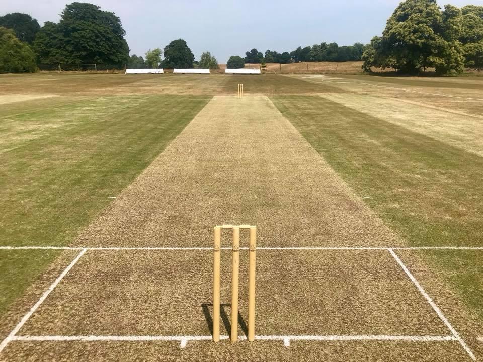 Petworth Park CC v Wisborough Green CC (T20)