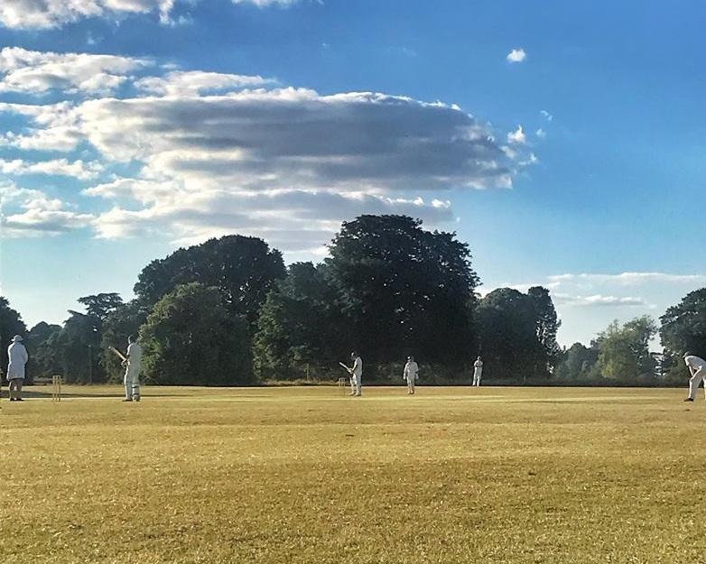 Petworth Park CC v White Hunter CC (T20)