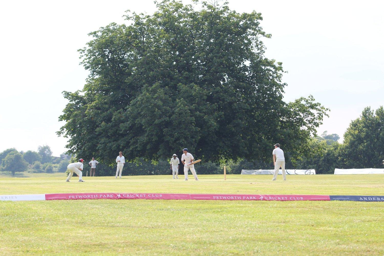 Petworth Park CC v Tillington CC