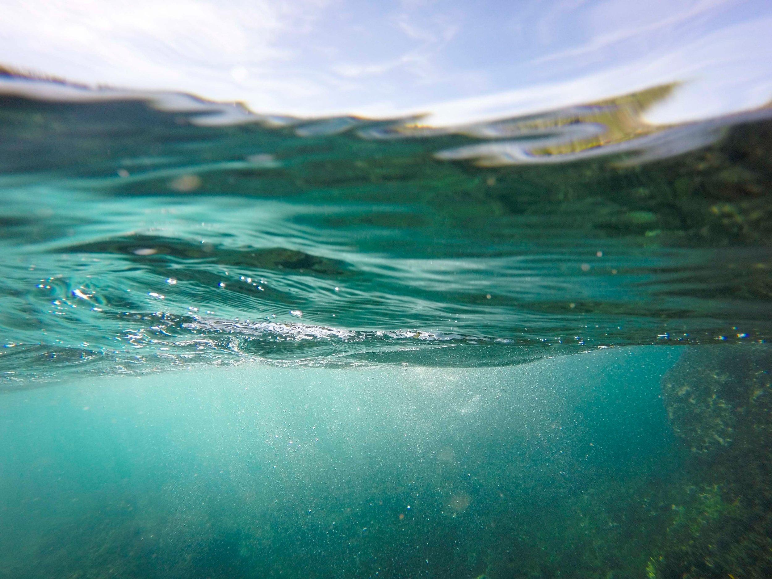 A healthy ocean equals a healthy planet.