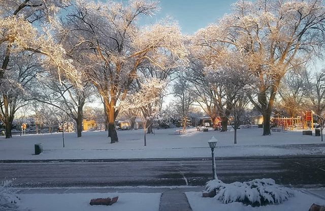 Not bad,  not bad at all.. #snowday #albuquerque