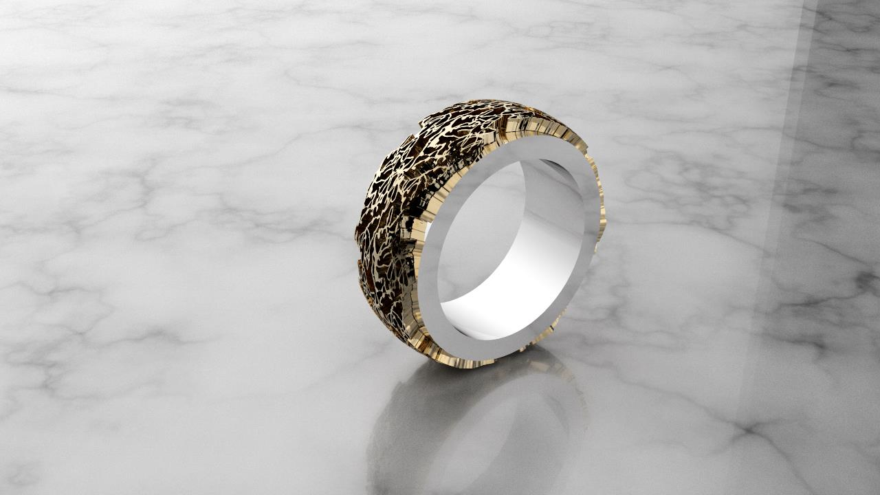 Tears of Liberation_Extruded Ring with Base_size 6_gold Detail.jpg