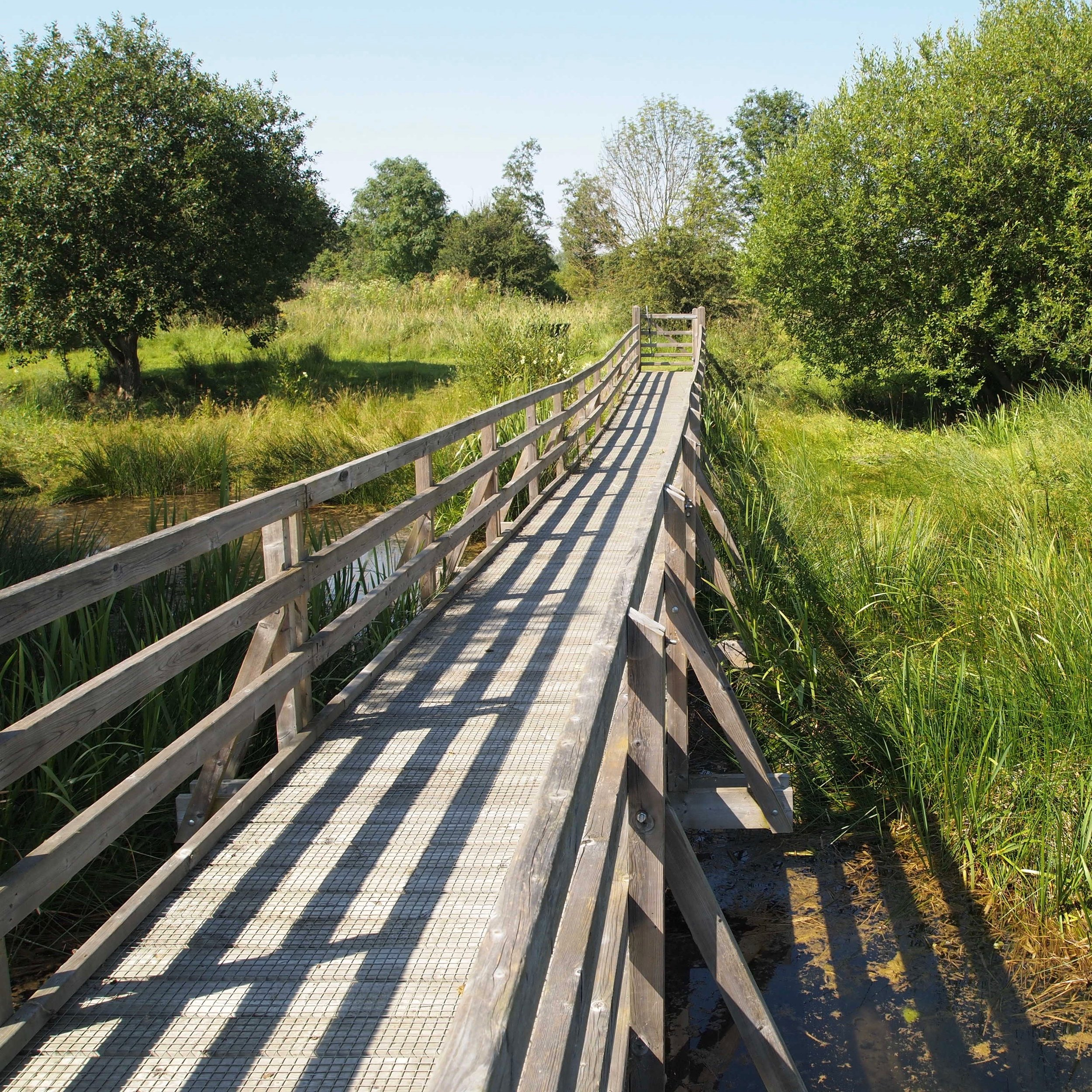 Boardwalk across to your eco home