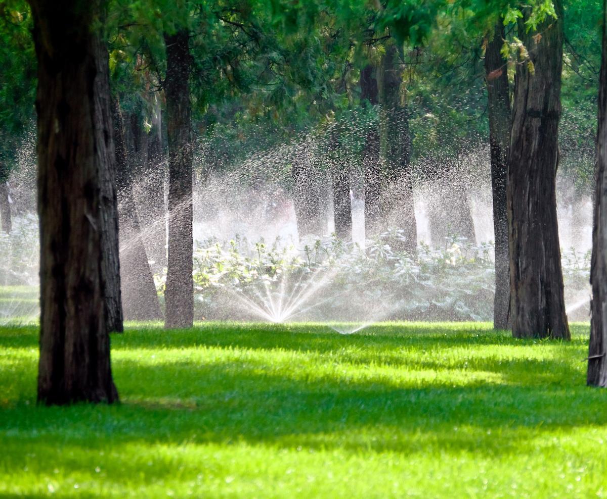 Irrigation_Sprinkler_System_Landscaping.jpg
