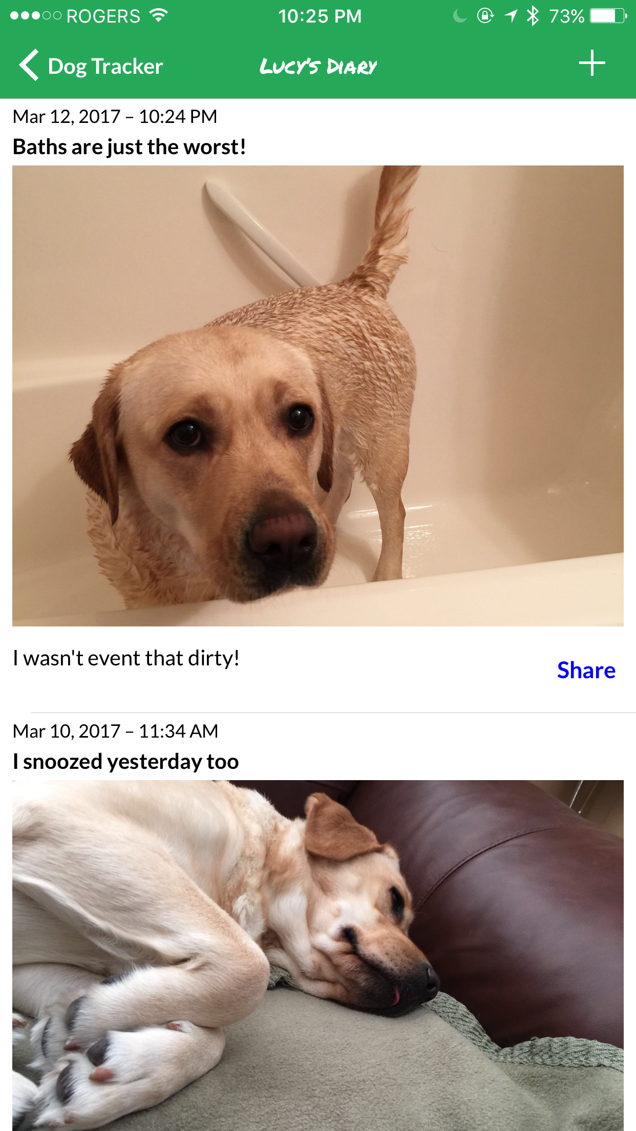 dog-tracker-diary.png