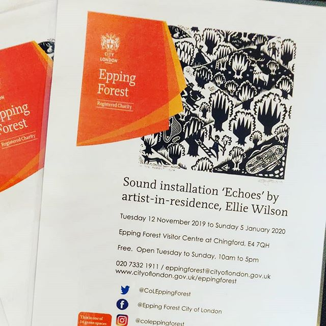 Posters! #eppingforest #artistinresidence #soundinstallation #composer #womeninmusic #forest #comingsoon #folk #electronica #newmusic #fieldrecordings #violin #instamusic #wfculture19 #chingford