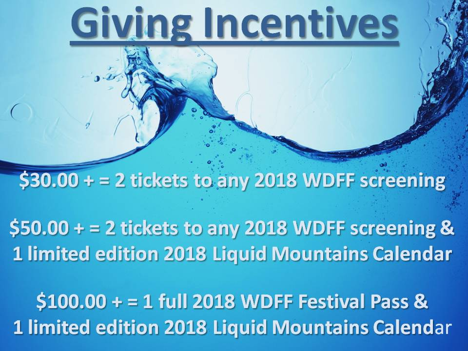 WD 2018 Giving Incentives.jpg