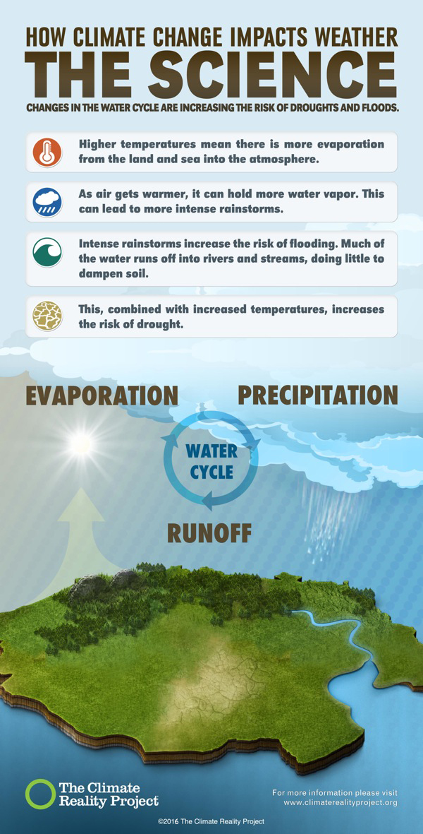 Infographic from The Climate Reality Project highlighting how climate change impacts the water cycle.