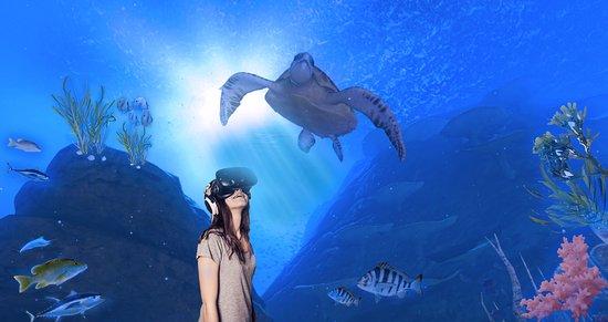 virtual-reality-experience.jpg