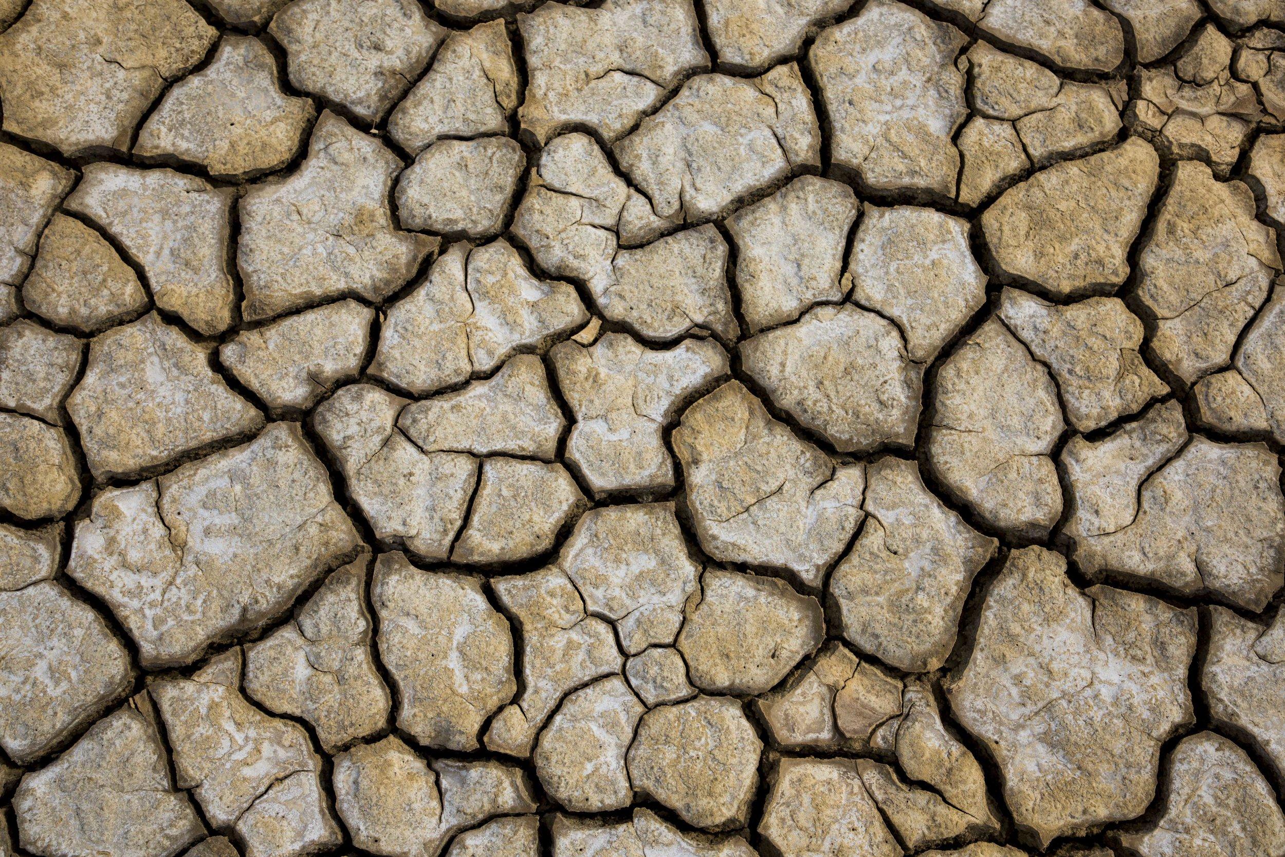 Fri Shadow of Drought.jpg