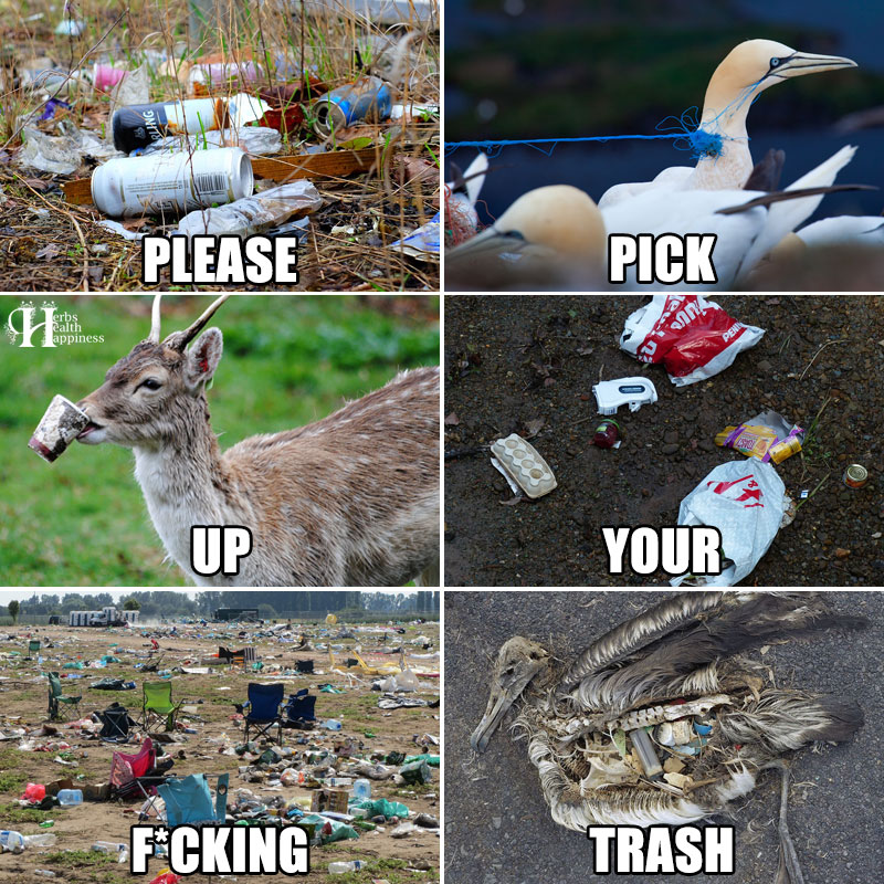 Please-Pick-Up-Your-Fcking-Trash.jpg