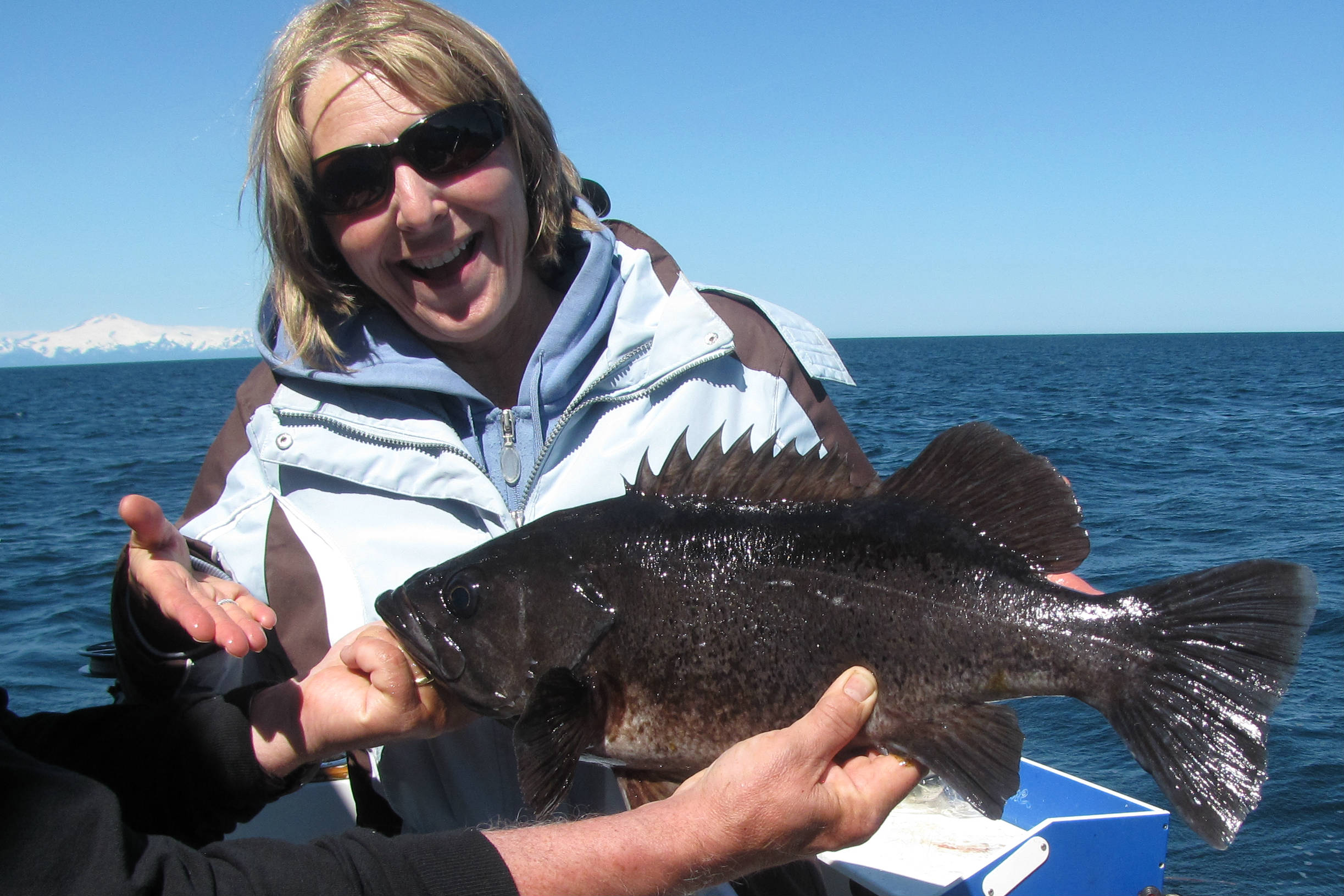 black rock fish