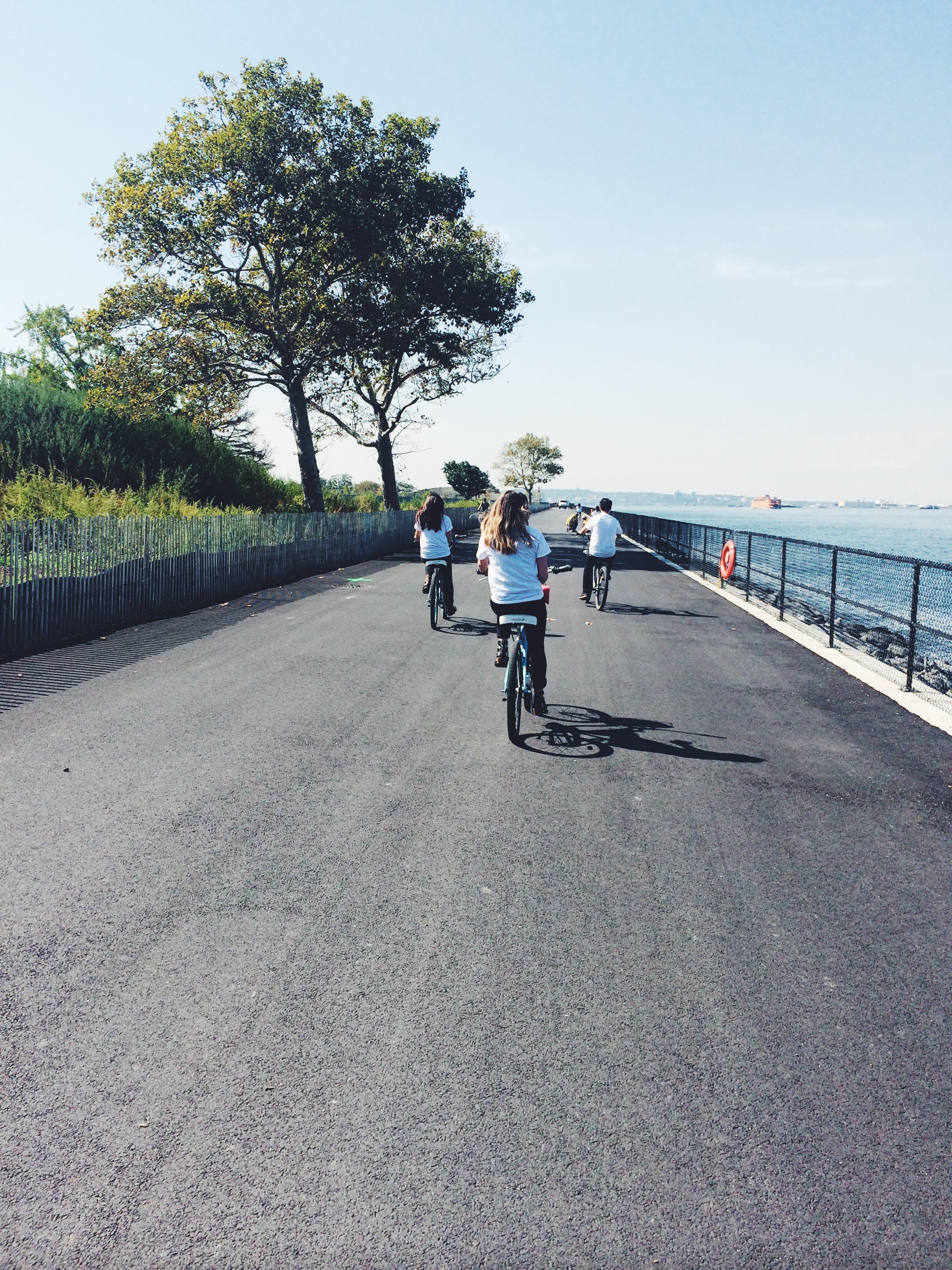 TC16_OFD_14_Back_Bike.JPG