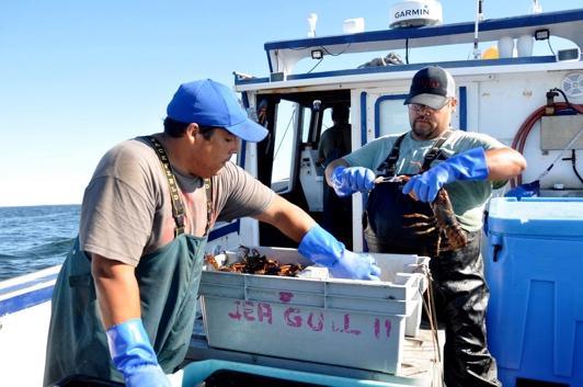 Fisheries_2.jpg