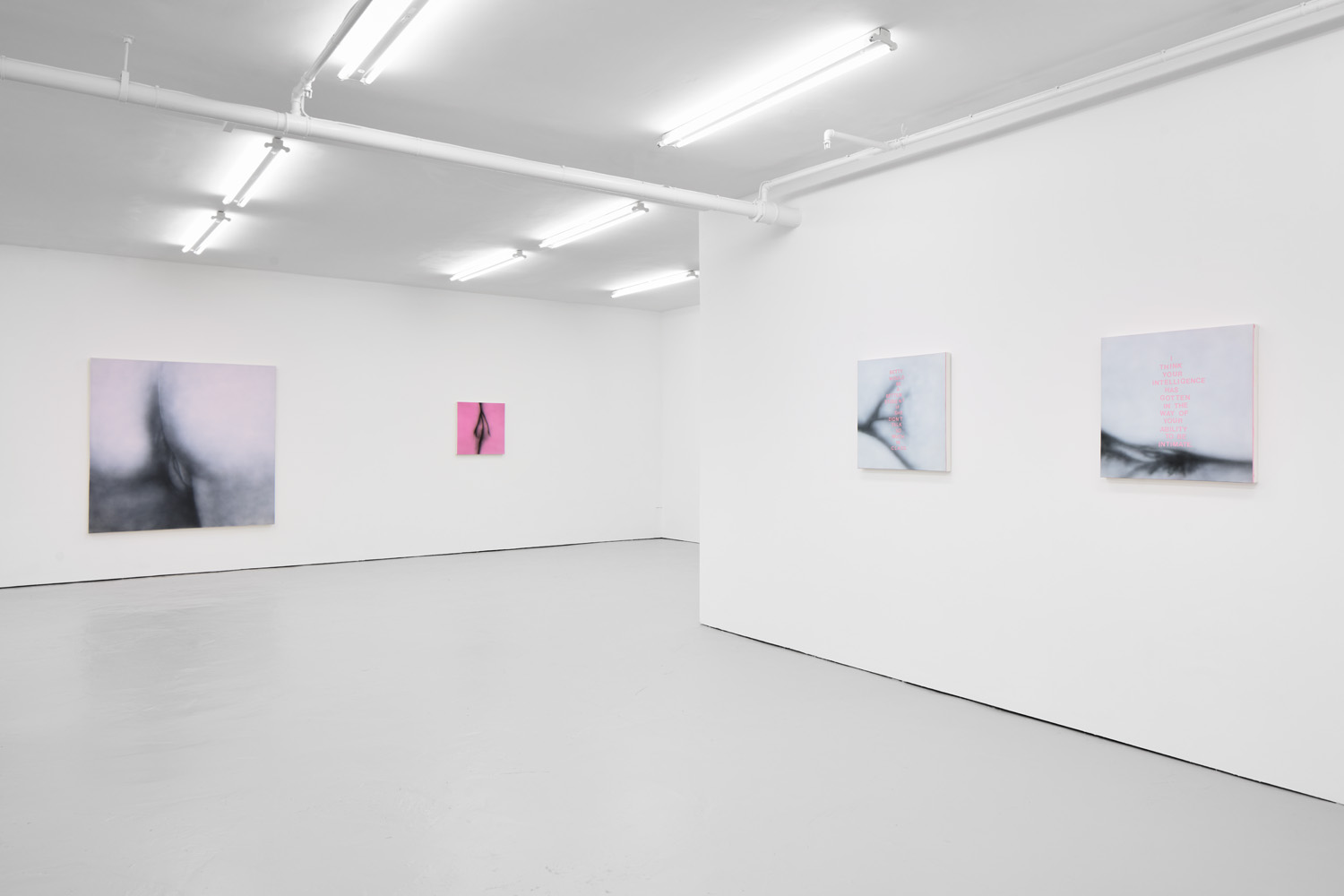 Install view 03 Betty Tompkins Fuck Paintings, Etc at J HAMMOND PROJECTS 2019.jpg