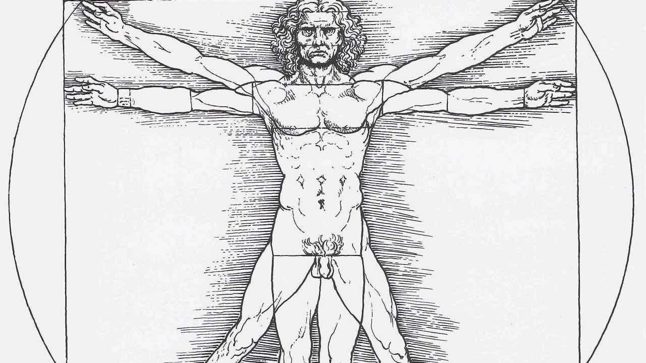 Vitruvian Man public domain.jpg