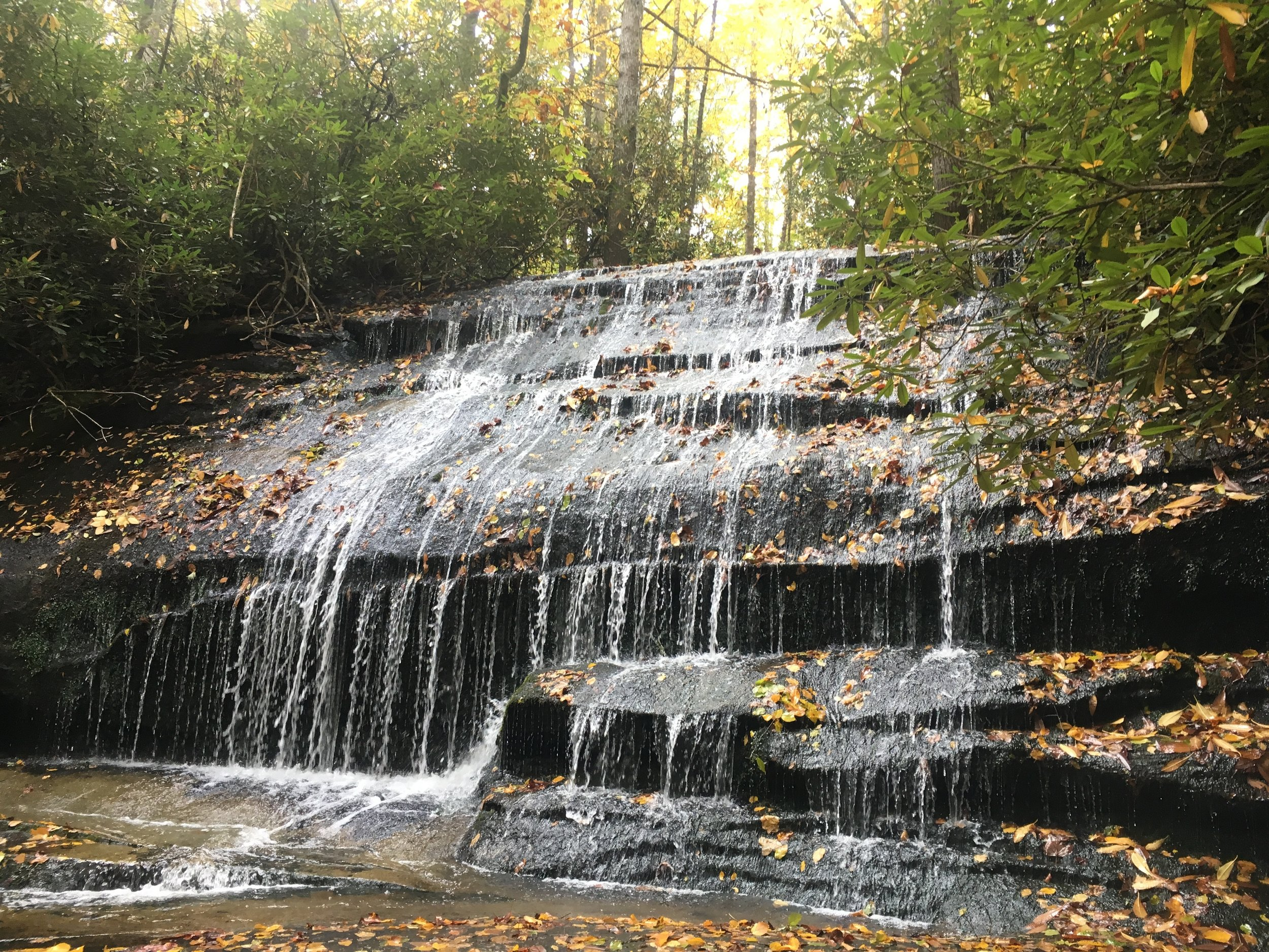 Just one of the many beautiful waterfalls in Pisgah!