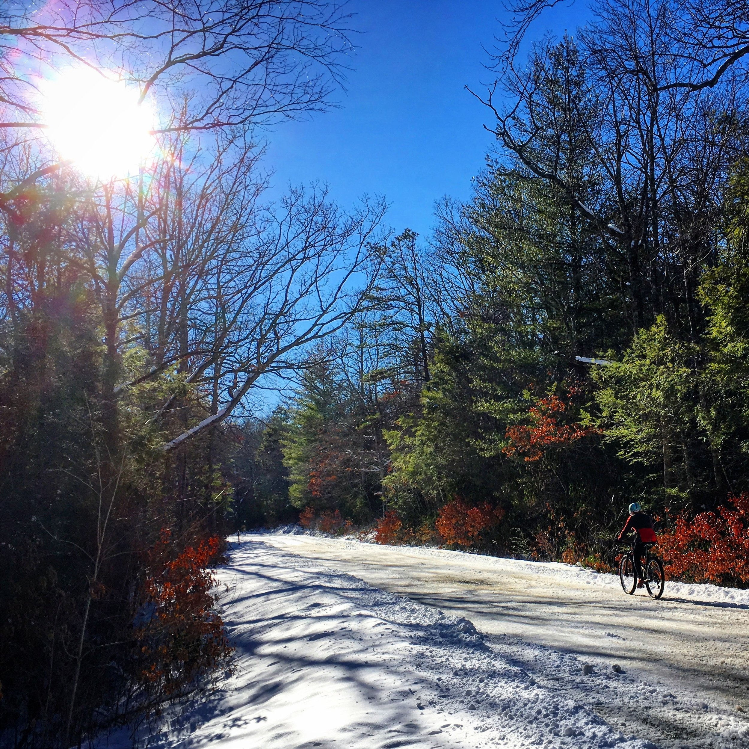 Jenna cruising on some icy Pisgah roads!
