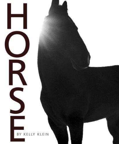 kelly klein: horse