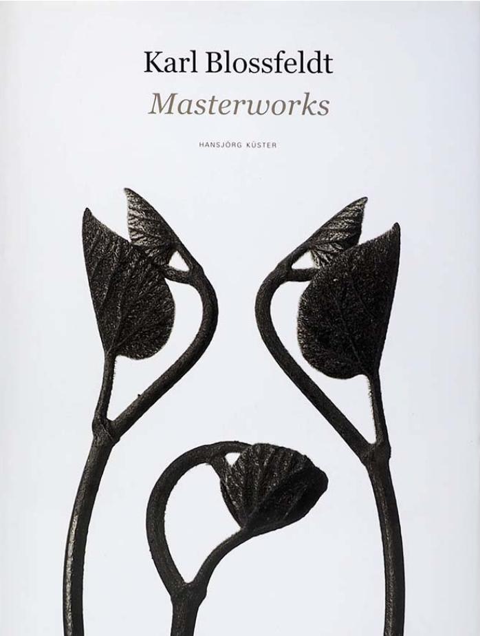 carl blosfeld / masterworks