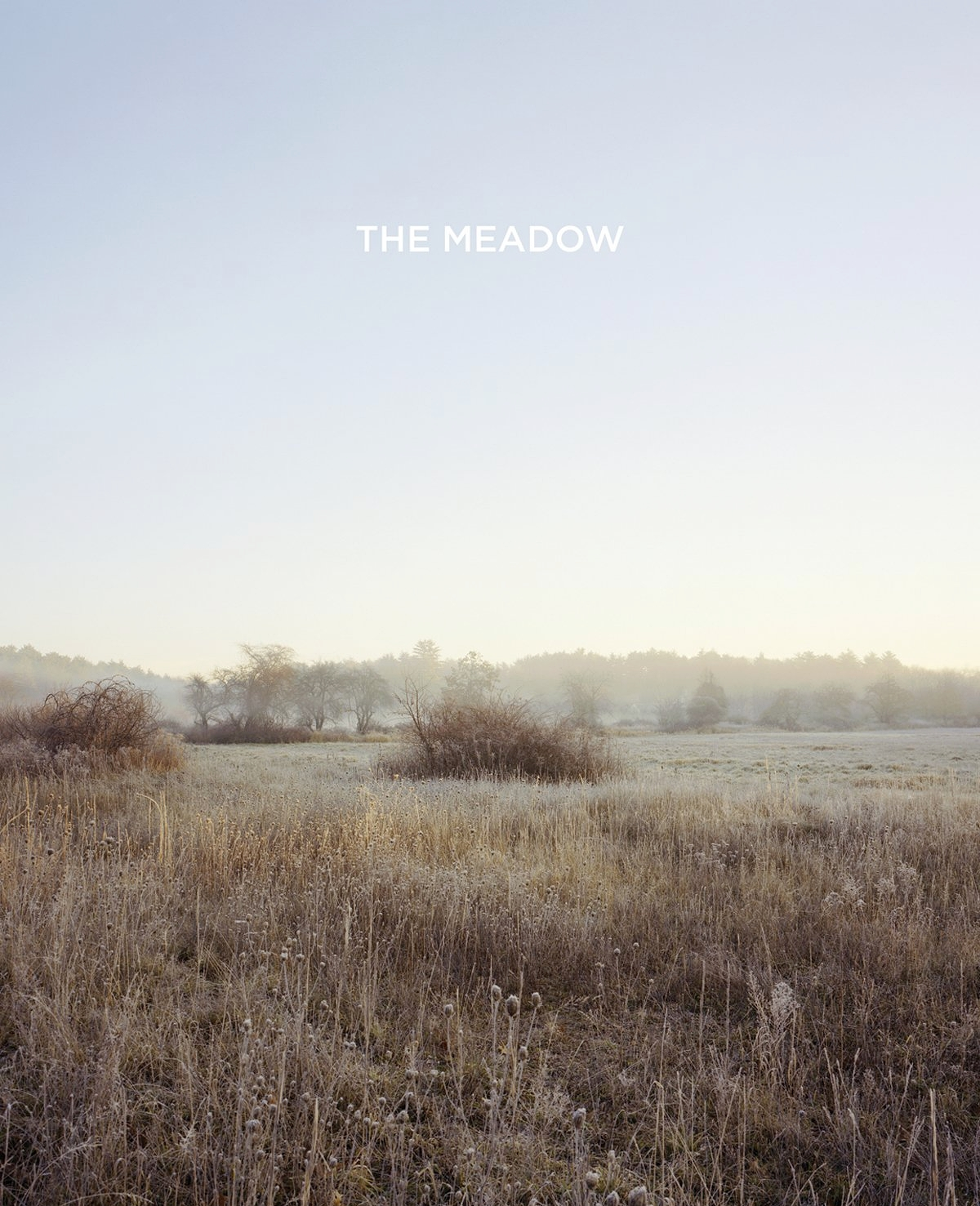 bosworth & kelley: the meadow