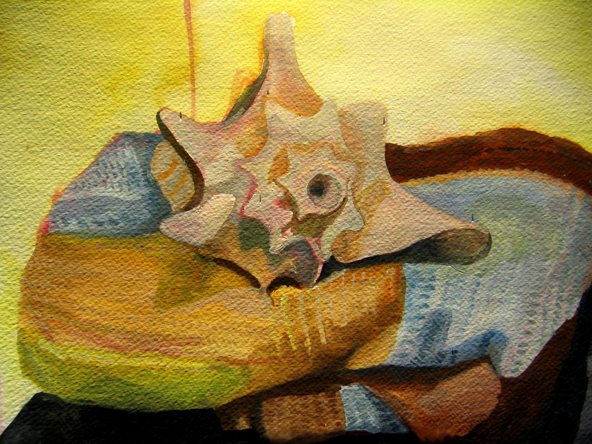 shell_and_blanket.JPG