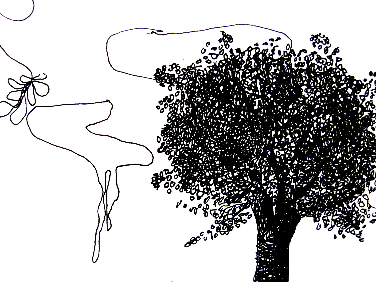 curly_tree2.jpg