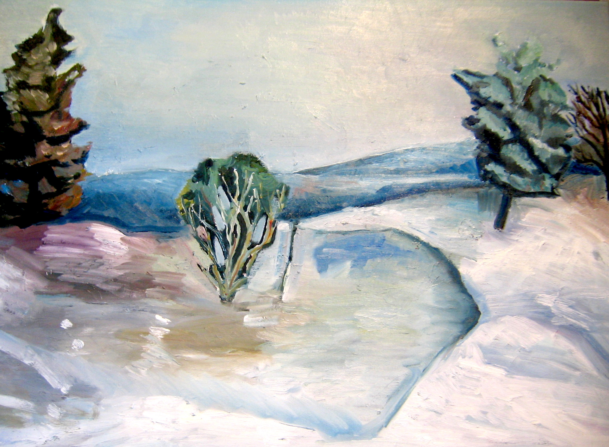 winter_hillside.JPG