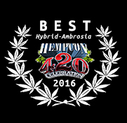 JAHnetics-San-Francisco-Cannabis-Delivery--Award-HempCon-Best_Hybrid-ambrosia2016.jpg