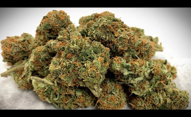 Strain Feature: 🍑 Fuzz - Feel the buzz of the Peach Fuzz! This frosty sativa provides a functional, cerebral high with a burst of peach flavor. #peachfuzz #sativa #strainfeature #jahnetics #jahneticsdelivery