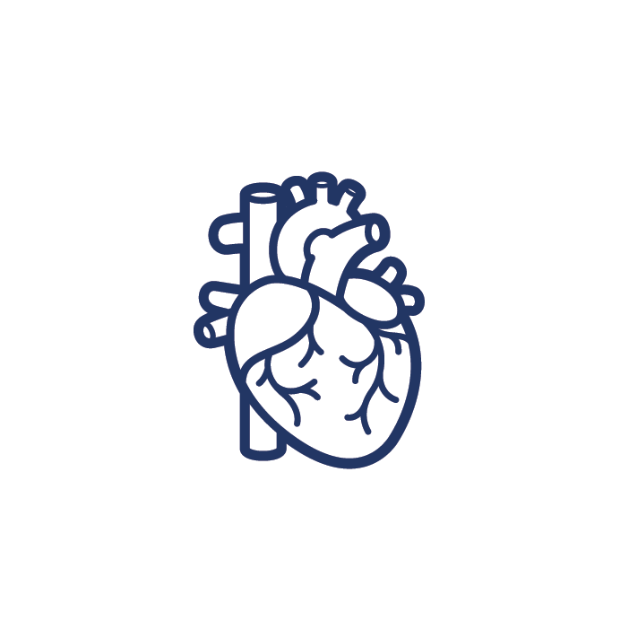 Organ Icons [Converted]-01.png