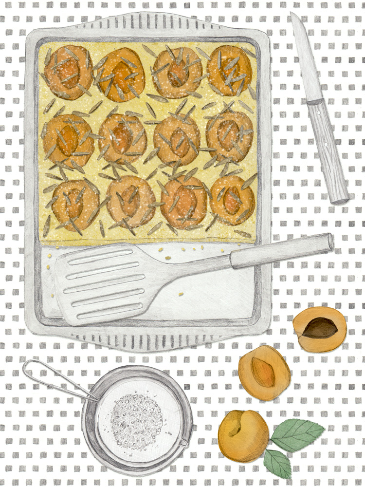 Saftiger Marillenkuchen by New Cakes On The Block. Foodblog. www.newcakesontheblock.com