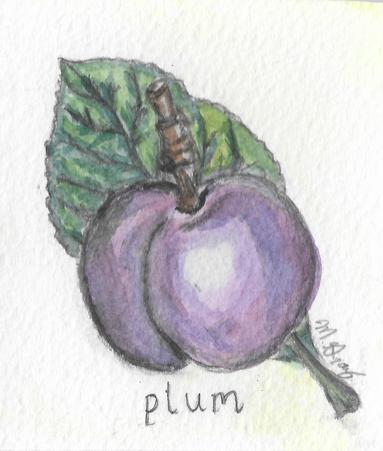 plumWeb.jpg