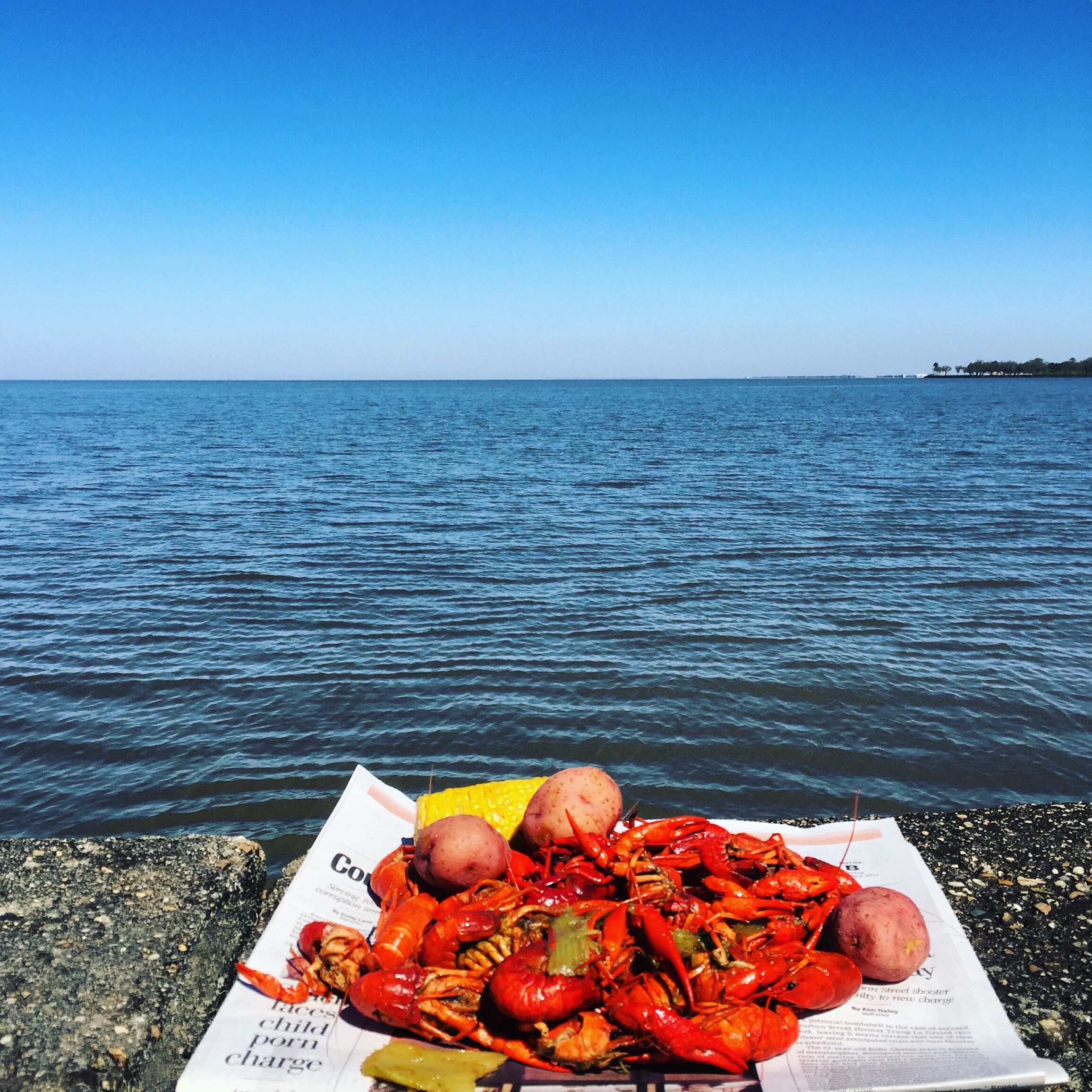 crawfish on the lake.jpg