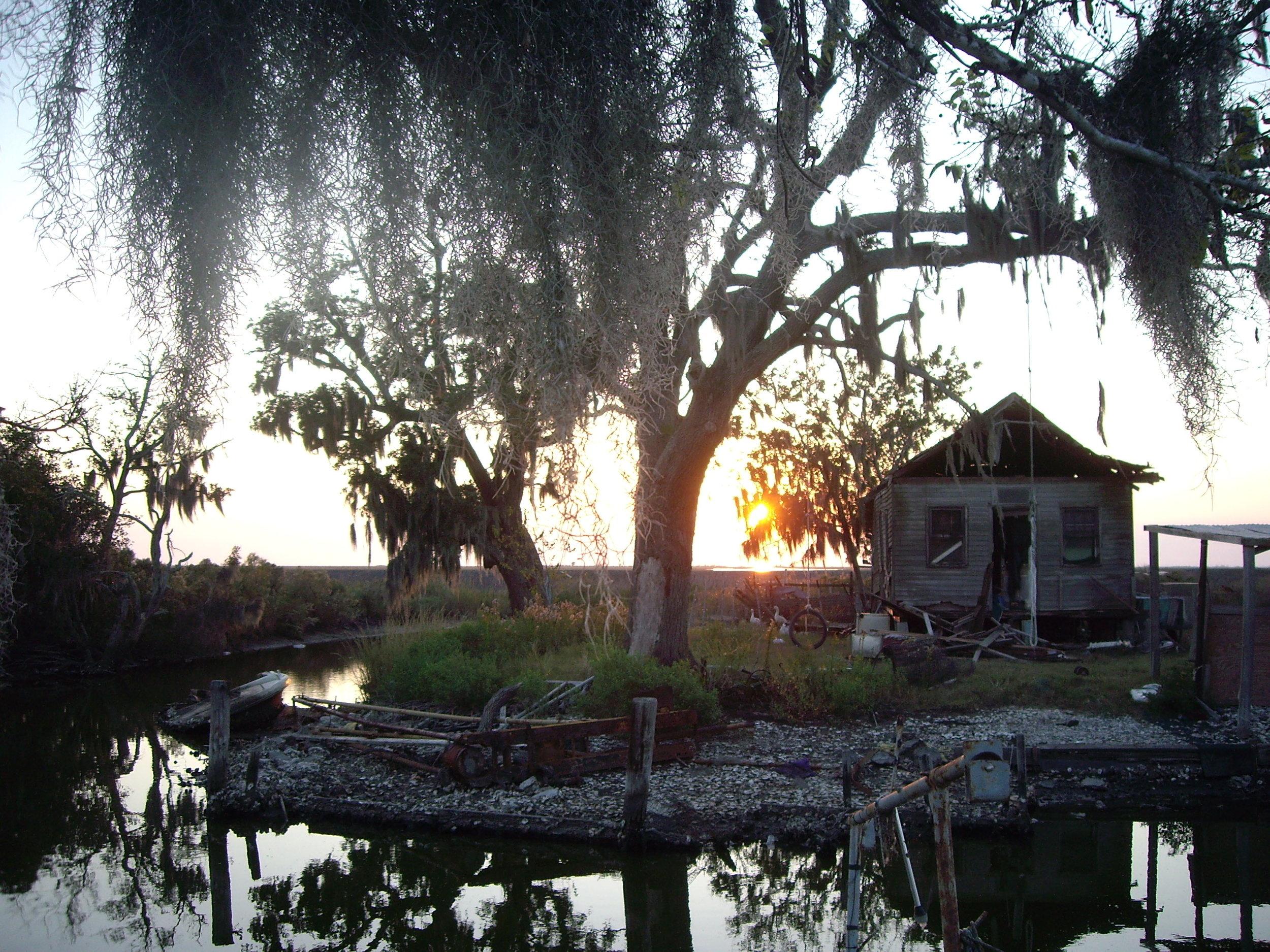 louisiana bayou.jpg
