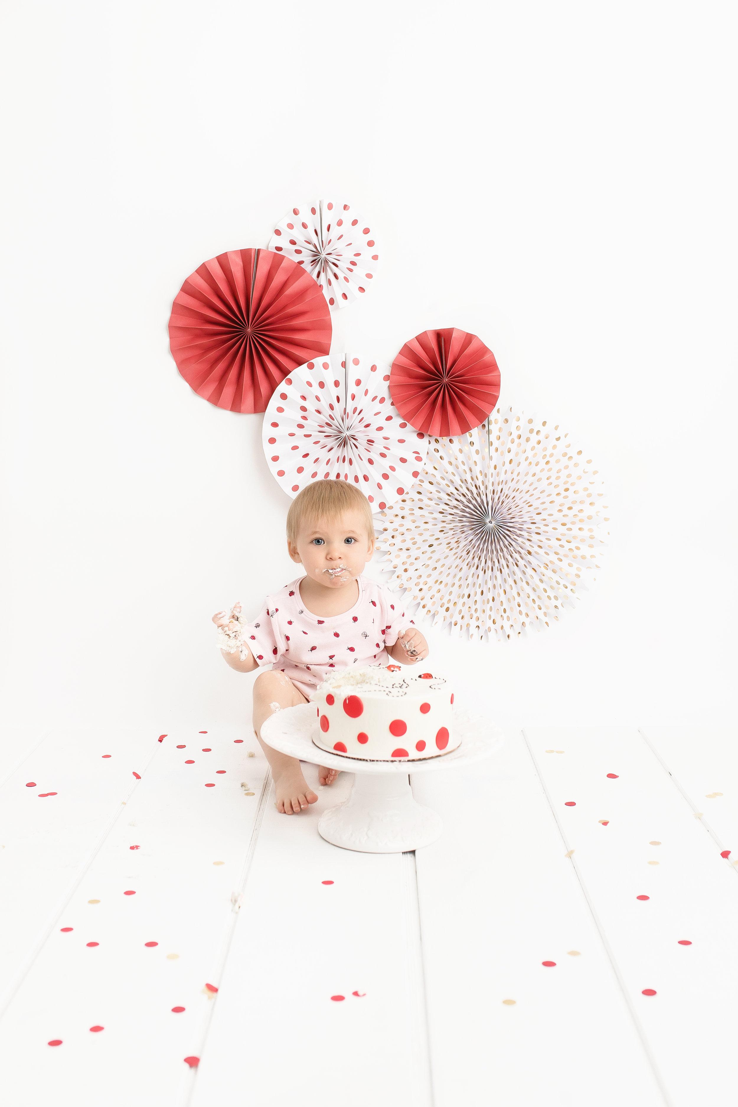 cake smash photography st-albert