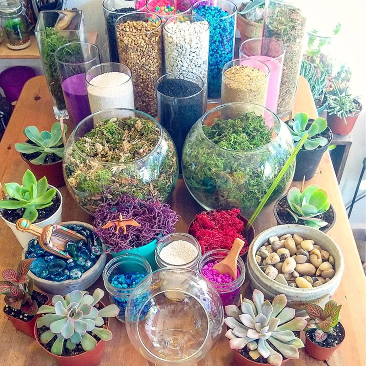 Terrarium Decor Spread.jpg