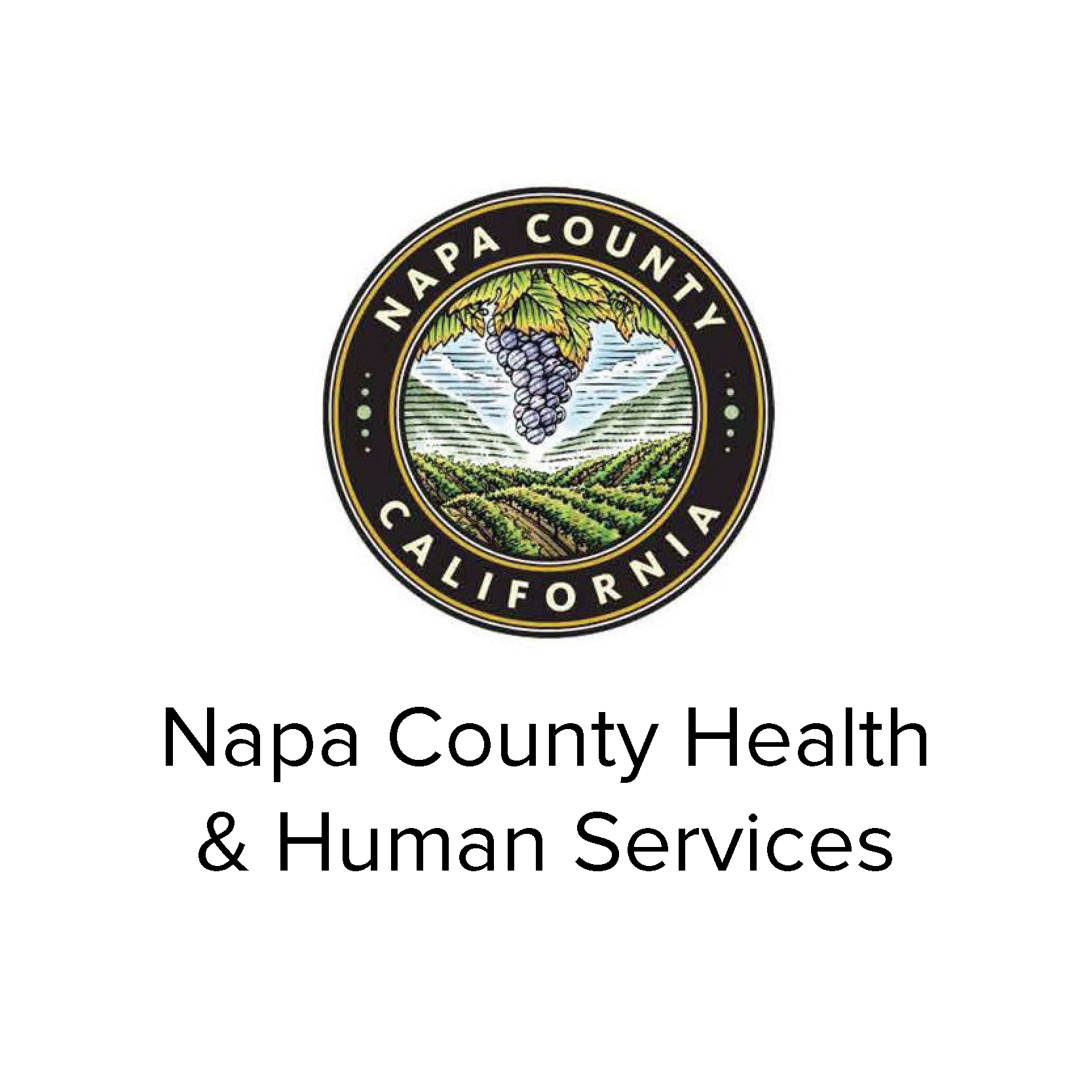 NCHHS Logo-01.png