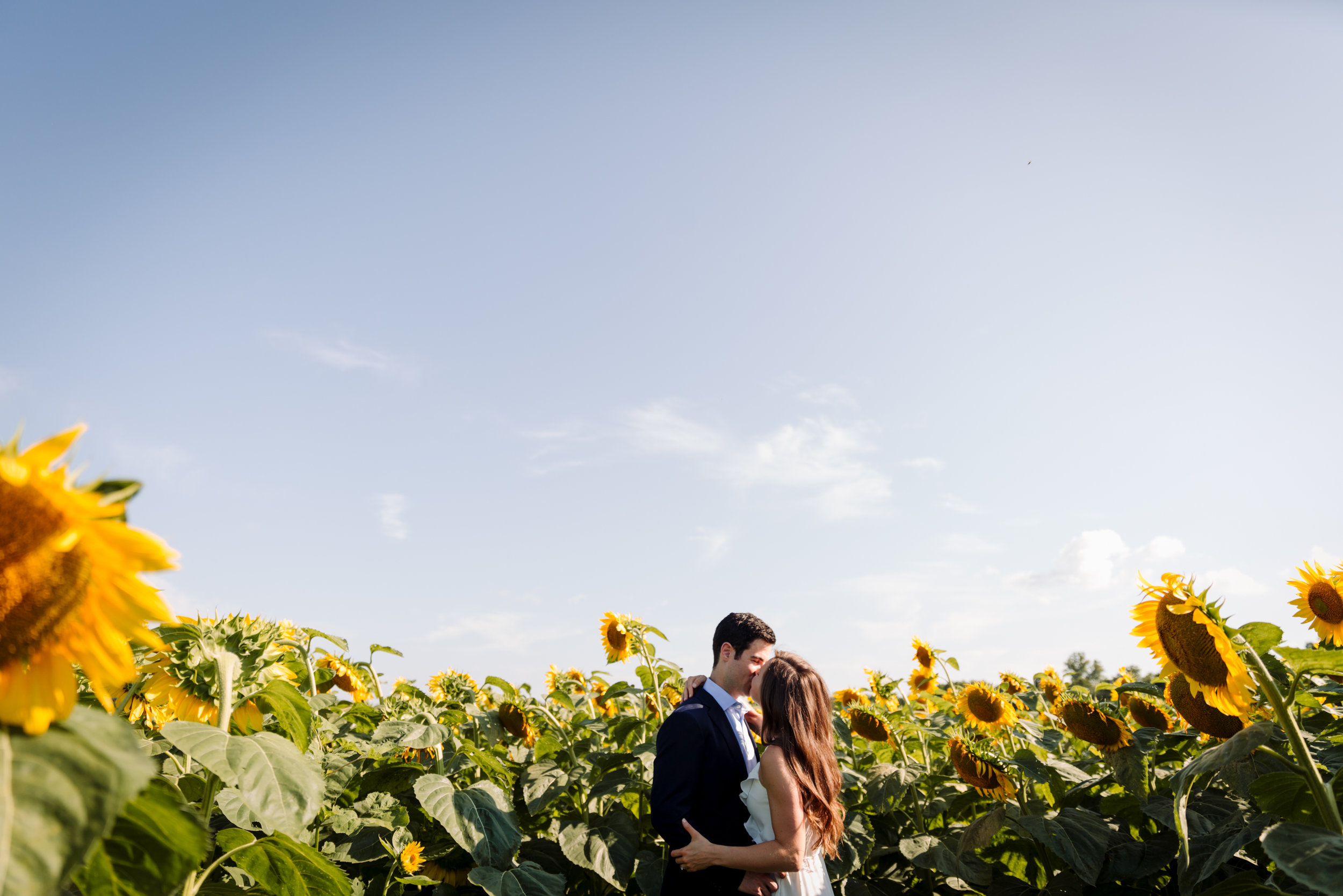 champaign engagement photography