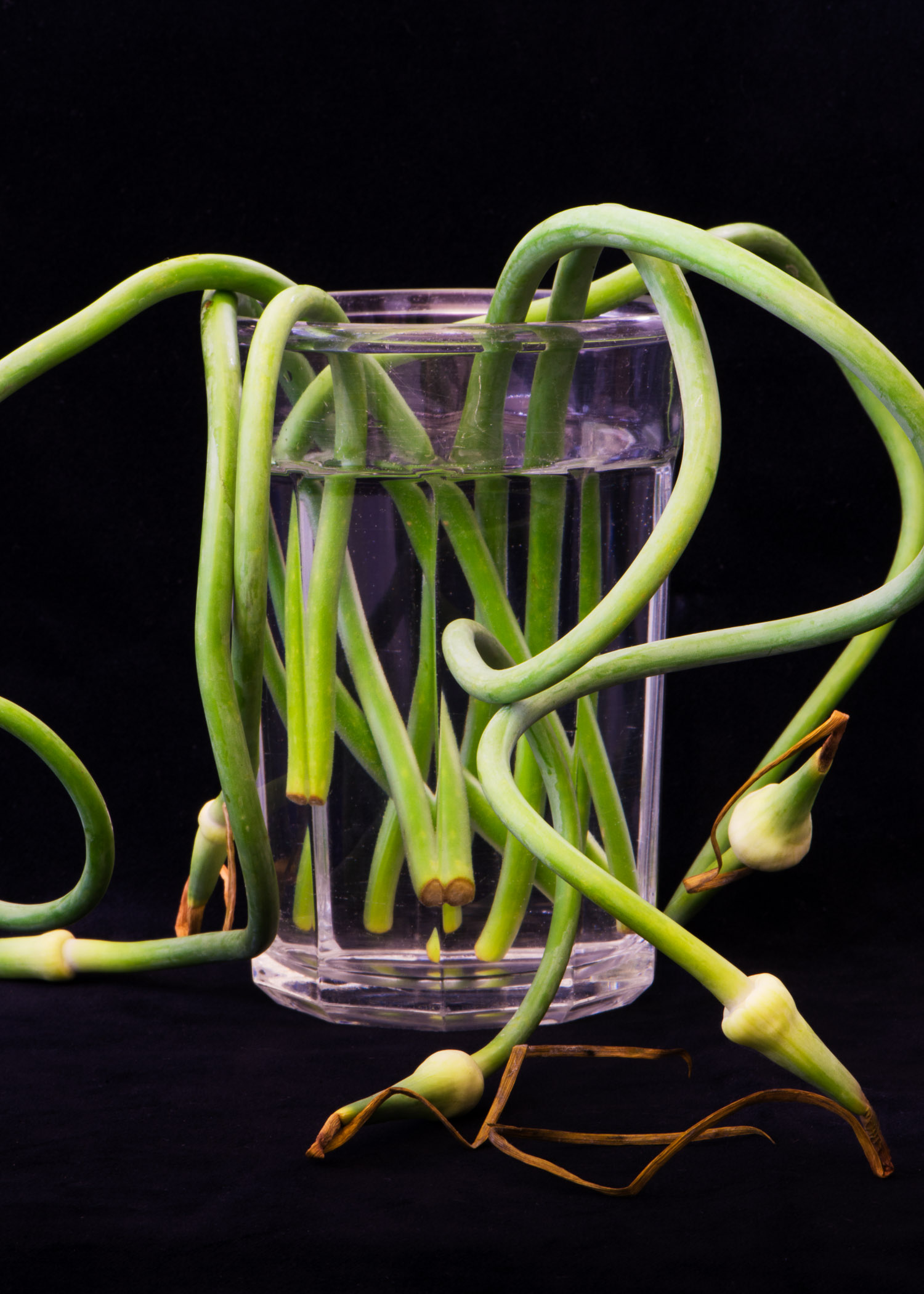 Scapes in Water Glass