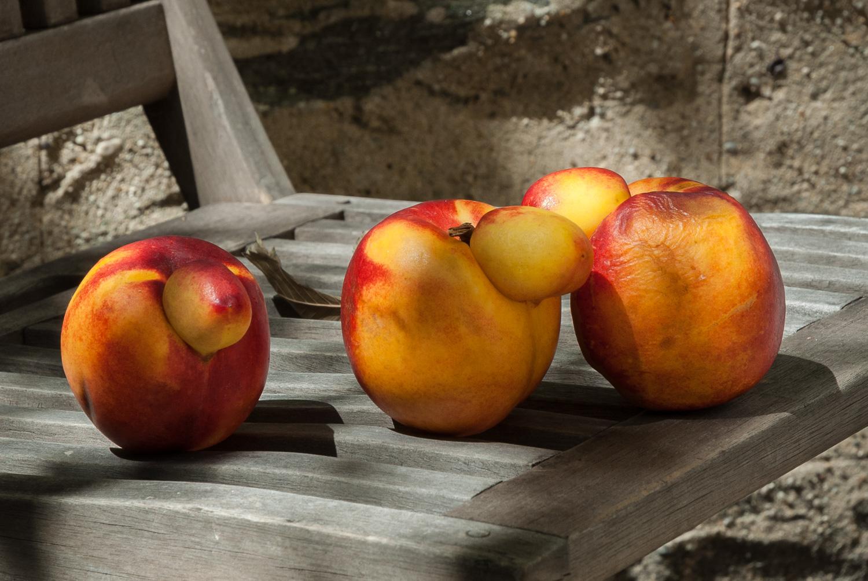 Three Strange Fruit Close-Up