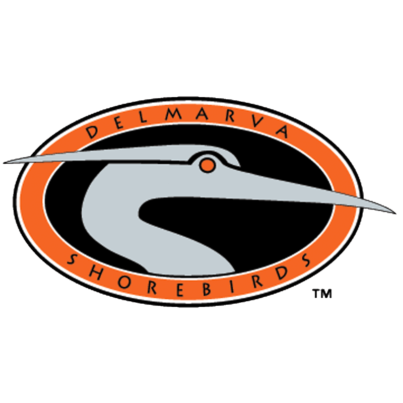 Delmarva Shorebirds.png