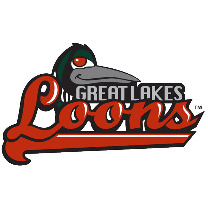 Great Lakes Loons.png