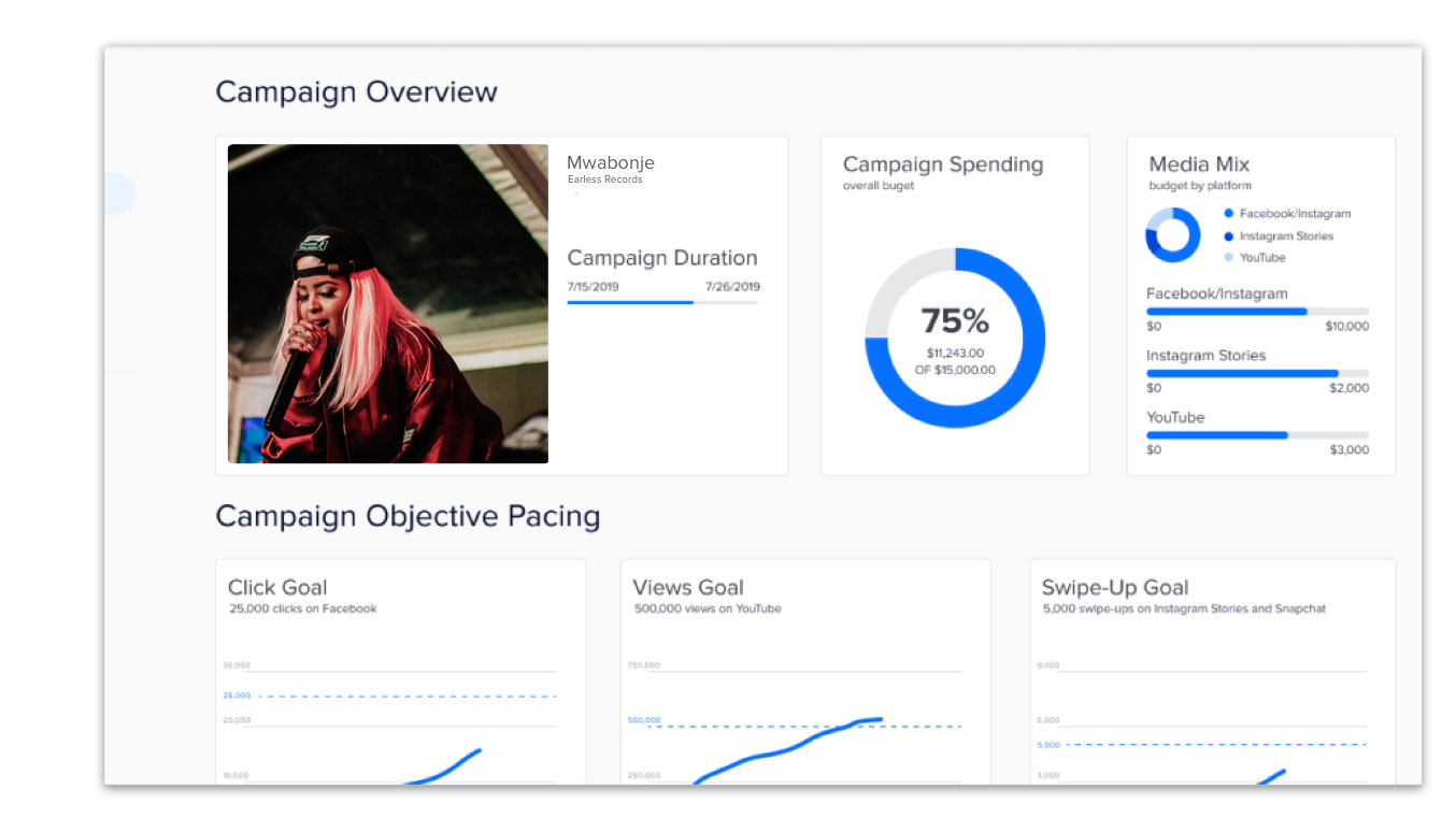 Understand marketing impact - See progress toward marketing goals in an easy-to-read analytics dashboard. Measure relevant metrics expected from a recorded music campaign.