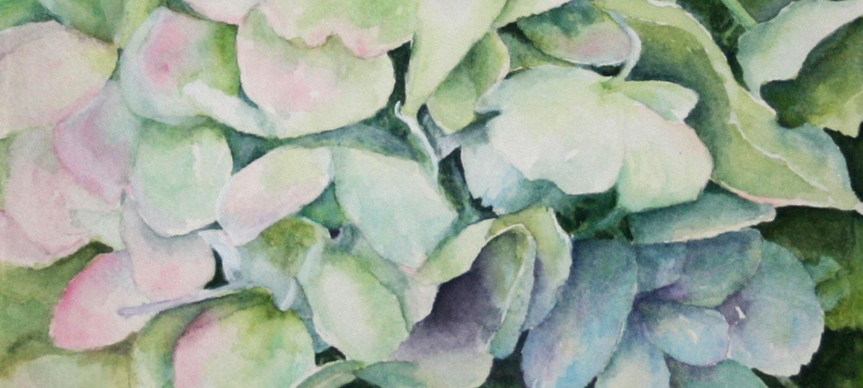 HomePage_Gallery_Watercolor.jpg